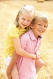 Portrait Of Boy And Girl In Summer Harvested Field stock photography