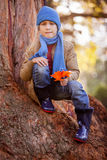 Portrait of boy holding pinwheel while crouching on tree trunk Royalty Free Stock Photo