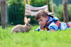 Portrait of a boy, he is holding rabbit Stock Photos