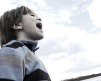 Portrait of a Boy. Little Boy on a Rock Stock Photos