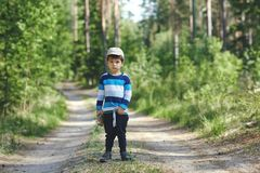 Portrait of a boy in nature. summer green background royalty free stock photography