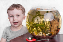 Portrait of boy near aquarium Royalty Free Stock Photography