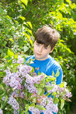 Portrait of boy in park with blooming lilacs Royalty Free Stock Image