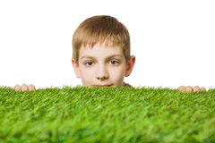 Portrait of a boy peeping out through green grass. Portrait of a boy peeping out through fresh spring green grass royalty free stock photos