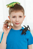 Portrait of a boy playing with dinosaur Royalty Free Stock Photography