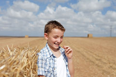 Portrait of a boy in rural Royalty Free Stock Photography