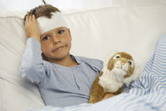 Portrait of a boy showing the bandage on his forehead Stock Photos
