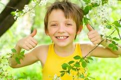 Portrait of a boy  showing thumbs up. Portrait of a happy boy  showing thumbs up outdoors Stock Image