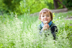 Portrait of boy sitting on grass in park Stock Photography