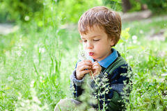 Portrait of boy sitting on grass in park Stock Image