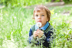 Portrait of boy sitting on grass in park Stock Images