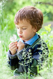 Portrait of boy sitting on grass in park Royalty Free Stock Photo