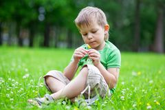Portrait of a boy smelling flowers Royalty Free Stock Photo