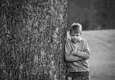 Portrait the boy standing near the tree.  Stock Photography