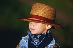 Portrait of a boy in a straw hat , country style. Portrait of a boy in a straw hat Royalty Free Stock Photos