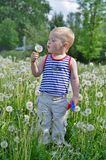 Portrait of a boy in a striped. Vest blowing on a dandelion Royalty Free Stock Images