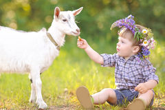 Portrait of a boy in the summer Royalty Free Stock Photography
