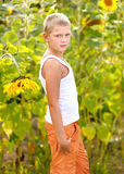 Portrait of a boy with sunflower Stock Photos