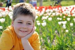 Portrait of a boy on a sunny day Stock Photos