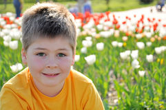 Portrait of a boy  on a sunny day Royalty Free Stock Photo