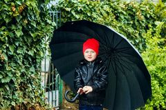 Portrait of a boy with an umbrella on a spring walk royalty free stock photography