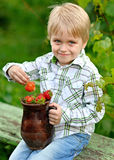 Portrait of a boy Royalty Free Stock Image