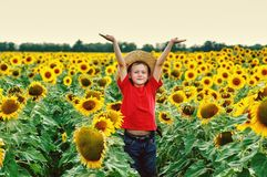 Active boy on a walk near the field with sunflowers on a summer day. Portrait of a boy on a walk at the field in the sunflowers . Boy in a straw hat in the Royalty Free Stock Photos