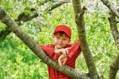 Portrait of a boy on a walk in the spring Park . royalty free stock photo