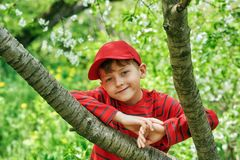 Portrait of a boy on a walk in the spring Park . royalty free stock images