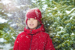 Portrait of boy in winter during day near fir tree Stock Photo