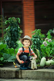 Boy working in the garden Royalty Free Stock Photography