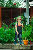 Boy working in the garden Stock Photography