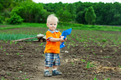 Portrait of a boy working in the garden Stock Photography