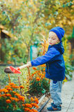 Portrait of a boy working in the garden Royalty Free Stock Image