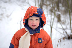 Portrait of a boy 3 years old with red cheeks from the cold Royalty Free Stock Image