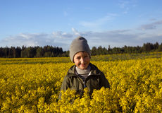 Portrait of a boy on a yellow field of flowers Stock Image