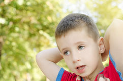 Portrait of boy. Portrait of young boy in nature Royalty Free Stock Photography