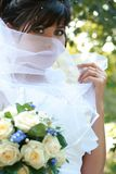 Portrait of a bride Stock Images