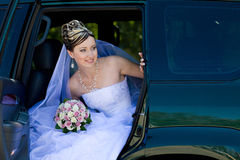Portrait of the bride Royalty Free Stock Images