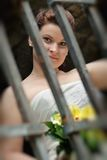 Portrait of the bride Royalty Free Stock Image