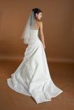 Portrait of the bride. Happy bride is posing in a photo studio Stock Image