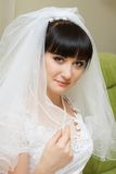 Portrait  Bride Stock Photos