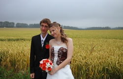 Portrait of bride and groom in field Royalty Free Stock Image