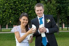 Portrait of bride and groom in the hands of the pigeons Stock Photos