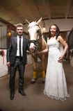 Portrait of bride and groom holding horse at stable Royalty Free Stock Image