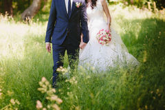 Portrait of the bride and groom in nature, happiness, family, relationships, youth, lifestyle Royalty Free Stock Photography