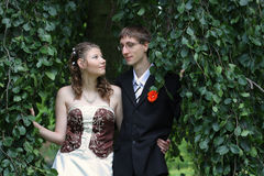 Portrait of bride and groom in summer park Stock Image