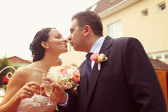 Portrait of a bride and groom wedding day Royalty Free Stock Photography