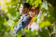 Portrait of bride hugging groom from back at park Royalty Free Stock Image
