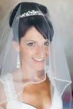 Portrait of bride indoors Stock Images